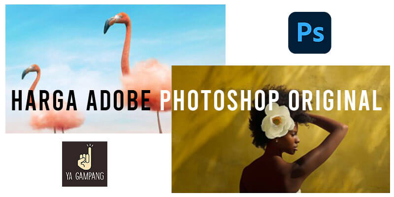 Harga Software Adobe Photoshop Original Terbaru